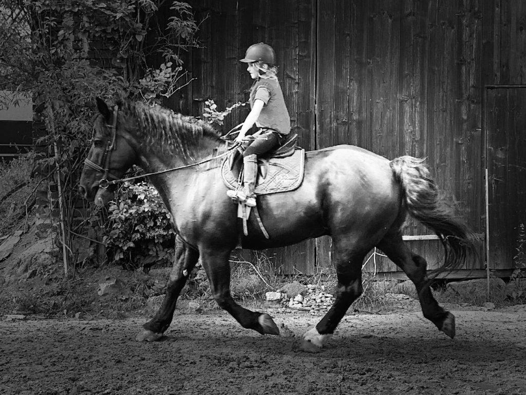 Jízdy na koni