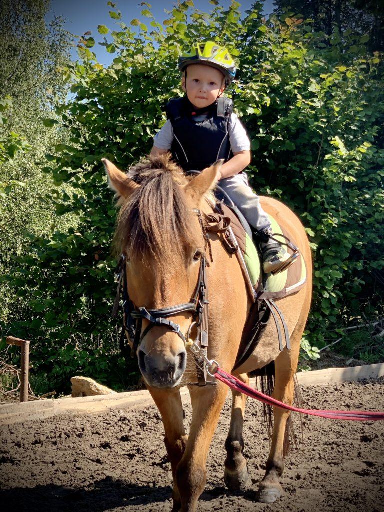 Jízdy na pony