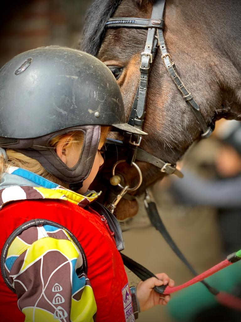 Nabízíme Jízdy na koni / pony