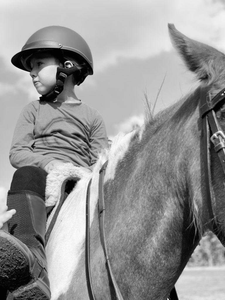 Celý den u koní